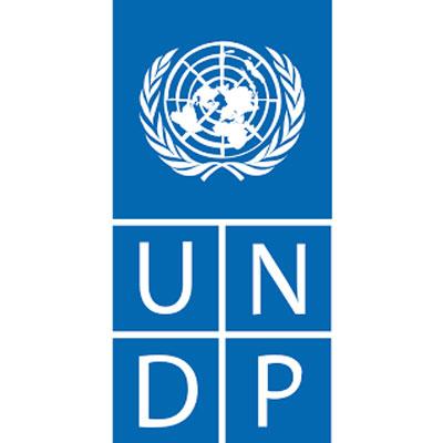 UNDP Leap